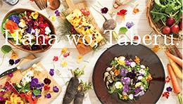 食べられるお花エディブルフラワー・ポインセチア鉢・花壇苗の脇坂園芸